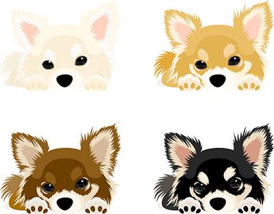 犬のリアルイラスト01
