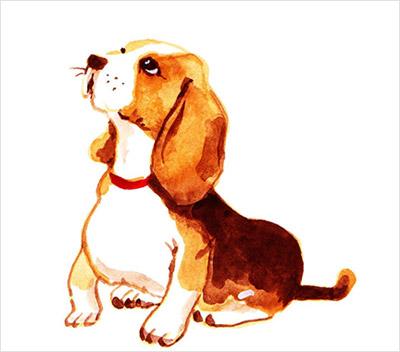 犬のリアルイラスト02