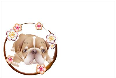 犬のリアルイラスト08