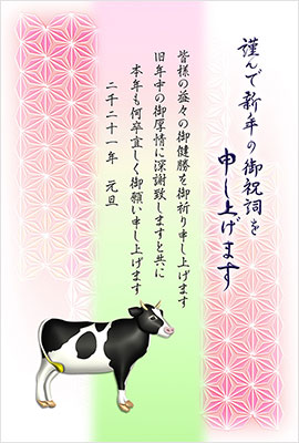 キャノンカジュアル・定番年賀状
