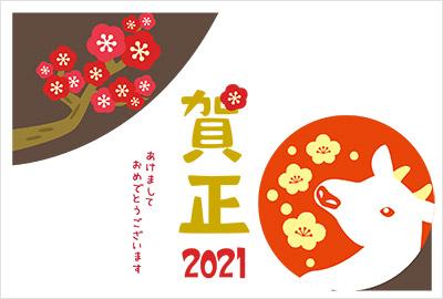 ポップで個性あふれる富士山と梅デザイン